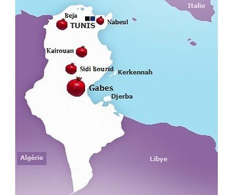 tunesien mit neuer granatapfel exportstrategie. Black Bedroom Furniture Sets. Home Design Ideas
