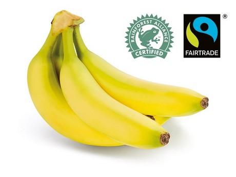 Excellent Rainforest Alliance and Fairtrade bananas